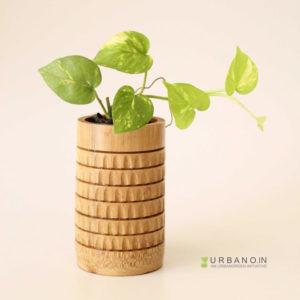 Mini-Tabletop-Planter