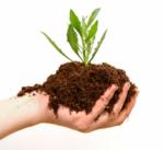 compost-agartala