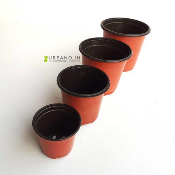 Thermoform pots terracotta color