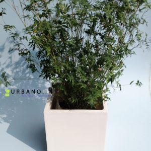 Fiberglass square-shaped planter
