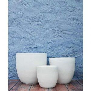 Fiberglass cup shaped planters
